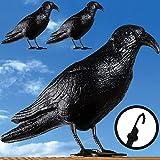 Taubenschreck Krähe schwarz - 3x mit Haken