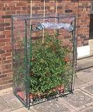 VARILANDO Tomaten-Gewächshaus Wachstumshilfe