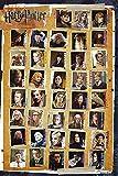 Harry Potter - 7 - Characters - Filmposter Kino Movie und die Heiligtümer des Todes Grösse 61x91,5 + 1 Ü-Poster der Grösse 61x91,5cm
