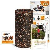 Blackroll Orange Die Faszienrolle Vital-Set Standard, inkl. DVD Leben ist Bewegung, Übungsbooklet und Poster