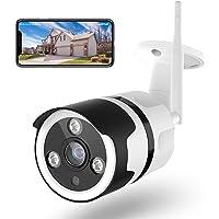 Netvue Telecamera Wifi Esterno - 1080P Full HD Videocamera Sorveglianza Wifi con Rilevamento di Umano Movimento, Visione…