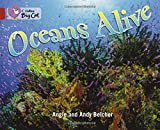 Oceans Alive: Band 14/Ruby (Collins Big Cat)
