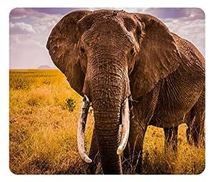 tapis de souris / réf : 404 déco éléphant