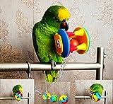 Ecoolbuy 3Pack cute Pet uccello morsi giocattolo pappagallo masticare palla giocattoli altalena gabbia Cockatiel parrocchetto