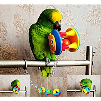 ECOOLBUY 3 PACK Cute Pet Bird Bites Toy Parrot Chew Ball Toys Swing Cage Cockatiel Parakeet ECOOLBUY 3 PACK Cute Pet Bird Bites Toy Parrot Chew Ball Toys Swing Cage Cockatiel Parakeet 61ZzeCrMDHL