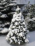 Kuenstlicher Weihnachtsbaum - 5