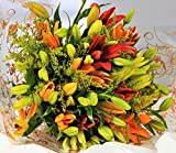 Homeland Florists Asiatic Lily Fresh Flowers Delivered, Send a Bouquet with Free UK Next Day Delivery, Gift Wrapped & Handwritten Card