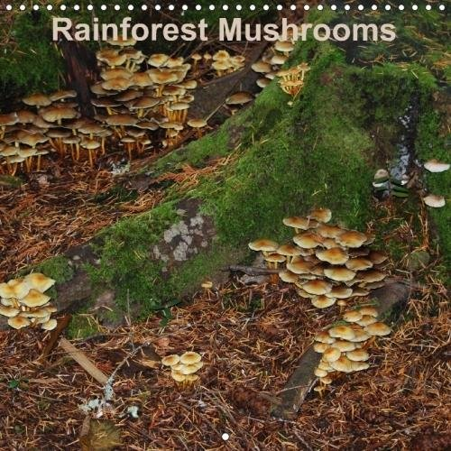 Vancouver Square (Rainforest Mushrooms (Wall Calendar 2018 300 × 300 mm Square): A 12-month calendar displaying some mushrooms found in the rainforests on Vancouver ... ... [Kalender] [Feb 20, 2017] S. N. Little)