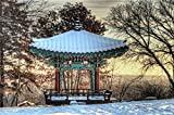 ZZXSY Puzzle Für Kinder 1000 Teile Der Koreanische Pavillon des Royal Alberta Museum Geeignet Für Besondere Geschenke