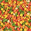 Kaytee Exact Rainbow Complete Large Parrot Food for Macaws, 1.13 kg from Kaytee