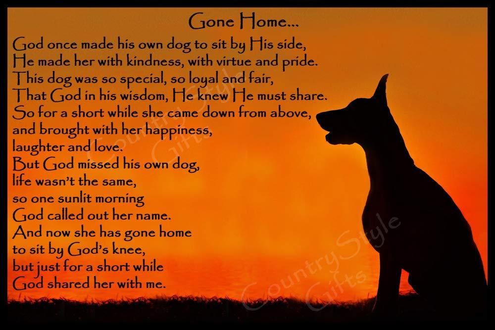 Doberman Pinscher Dog Bereavement pet Loss Sympathy Memorial Rainbow Bridge Gift – Gone Home (Female)