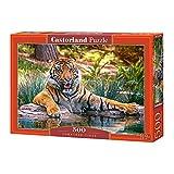 Castorland B-52745 Sumatran Tiger Jigsaw Puzzle