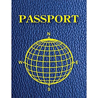 Ashley Productions ASH10708 Blank Passport 12 Pack, Multicolored