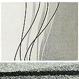 Design Teppich Abstract Art | moderner Wohnzimmerteppich mit Trend Linien Muster | in 2 Größen für Wohnzimmer, Esszimmer, Schlafzimmer etc. | grau 160x220 cm