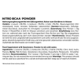 ESN Nitro BCAA Powder Pro Series, Cola, 500g Beutel - 3