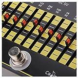 egalisateur - Caline CP-24 10-Bande EQ egalisateur True Bypass Effet audio de Guitare en alliage d\'aluminium