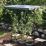 Gartenwelt Riegelsberger Tomaten und Pflanzendach Basisbausatz 78 x 118 cm 120-200 cm 90450
