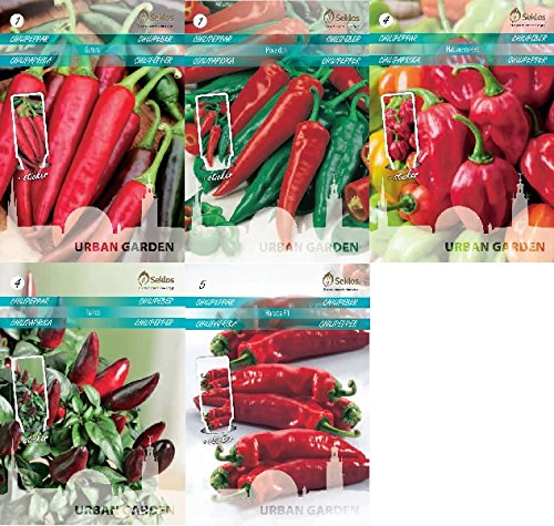 seklos-lt-hot-chili-pepper-seed-collection-5-in-1-packet