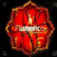 Flamenco New Grooves