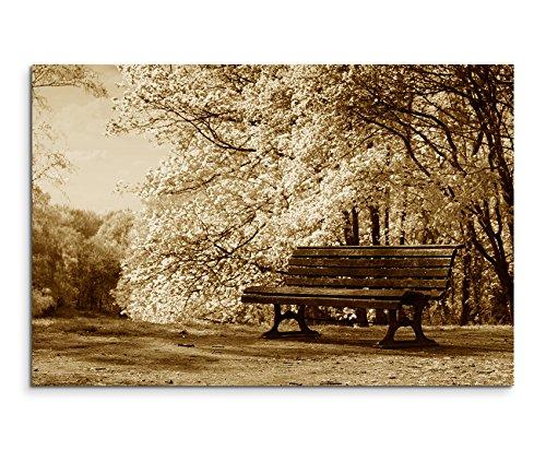 100x-70cm-immagine-seppia-fioritura-alberi-bank