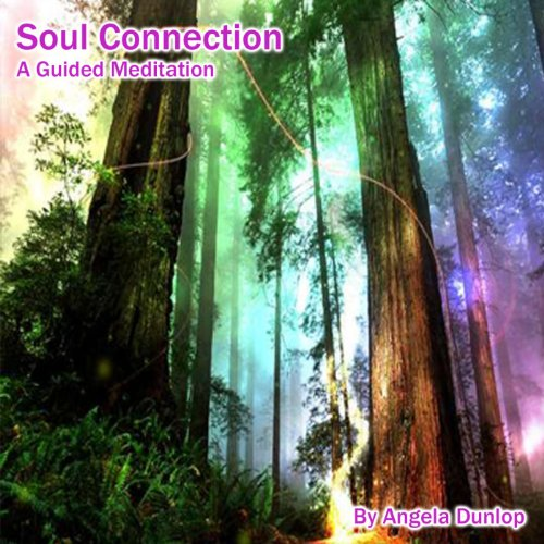 Soul Connection - A Guided Med...