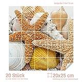 Graz Design 765017_20x25_110 Fliesenaufkleber für Bad und Küche | Klebefolie selbstklebend | Bild Motiv Muscheln und Seesterne | Folie zum Aufkleben (Fliesenmaß: 20x25cm (BxH)//Bild: 110x110cm (BxH))