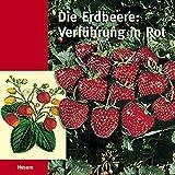 Die Erdbeere: Verführung in Rot. Kulturgeschichte einer Frucht aus den Vierlanden