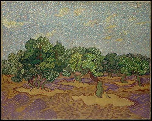 ZLYYH Ölgemälde Auf Leinwand Handgemalt,Olivenbäume Von Vincent Van Gogh Berühmte Ölgemälde Reproduktion Home Decor, Wand Kunst Bild Dekorative Anstriche Für Wohnzimmer Schlafzimmer Sofa Hintergrun