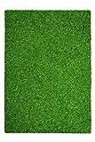 Teppich Grass 110 Grün 120cm x 170cm Strapazierfähiger Outdoor-Bodenbelag für Wintergarten oder Balkon.