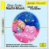 Eine Gute-Nacht-Musik