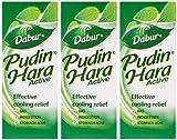Dabur Pudin Hara 30 ml (Pack of 3) - PamHerbals