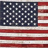 Stoff mit der amerikanischen Flagge von Timeless Treasures