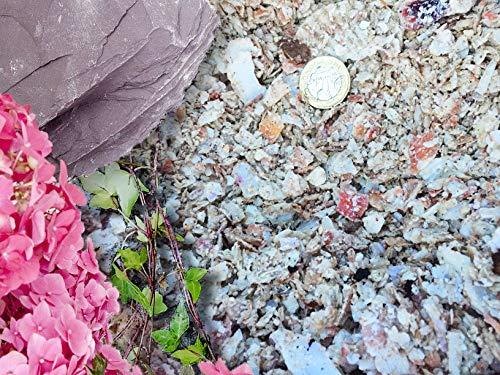 Gravier Gravillons Pierre Ardoise Dissuader les mauvaises herbes Jardin Patio Allée Plante Dessus - Coquille Saint Jacques Paillage, 20KG