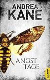 Angsttage (Romantic Suspense der Bestseller-Autorin Andrea Kane 2)