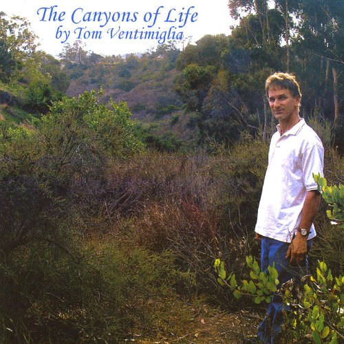 The Canyons of Life