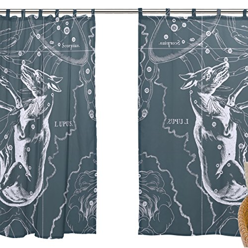 jstel 2Pcs Voile Fenster Vorhang, Fantasy Sternbild Graph Lupus, Tüll Sheer Vorhang Tuch Querbehang 139,7x 198,1cm Zwei scheibenelementen Set
