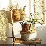 TAOtTAO Flower Basket Seegras-Weidenkorb-Weidenkorb-Blumen-Topf-faltender Korb-schmutziger Korb (Weiß)