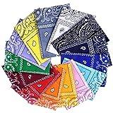 Awinker Bandane Cappelli Collo Testa Sciarpa Fazzoletti da Taschino Disegno Paisley Realizzati in 100% Cotone (14-pz)