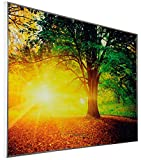 Infrarotheizung Bildheizung 500Watt WINTERSCHLUSS ANGEBOT von InfrarotPro ® Made in Germany 7 JAHRE GARANTIE Infrarotheizkörper Elektroheizung Elektroheizkörper
