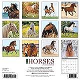 Image de Just Horses 2017 Calendar