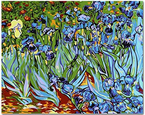 LKHOV Malen nach Zahlen Kein Rahmen Bild auf Wand Acryl Malen nach Zahlen DIY Leinwand Malerei Kunst Malen nach Zahlen Abstract Iris 40cmx50cm - Abstract Iris