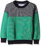 Blue Giraffe Boys' Sweater (AW16/SWT/FR-...