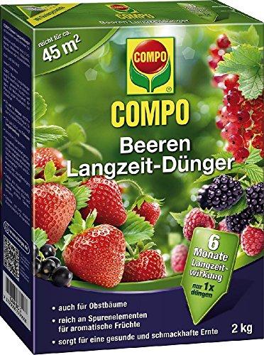 baies-de-longue-duree-compo-engrais-pour-baies-lan-gzeitdung-2-kg-21573
