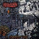 Sentenced: Shadows of the Past [Vinyl LP] (Vinyl)