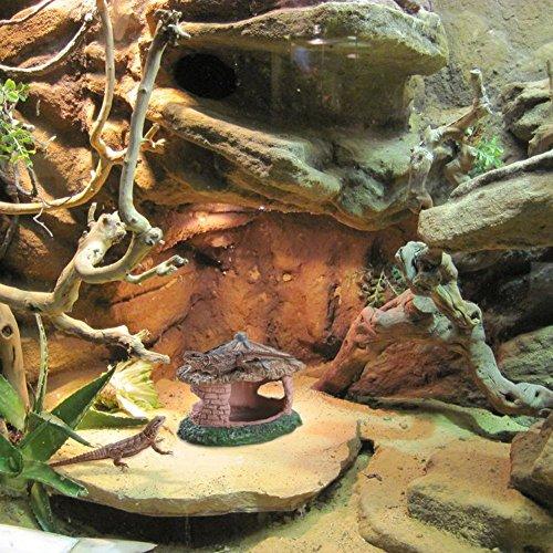 Zanteca - Cueva para pavimento de jardín, para reptiles, anfibios, acuarios, terrarios