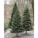 Set 2 x Künstlicher Christbaum KASPAR mit Ständer, gemischt, 240cm, Ø 145cm - Weihnachtsbaum - artplants