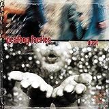 Peatbog Faeries: Dust (Audio CD)