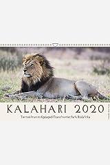 Kalahari - Tierreichtum im Kgalagadi Transfrontier Park, Südafrika (Wandkalender 2020 DIN A3 quer): Das Naturschutzgebiet in der Kalahariwüste ist ... (Monatskalender, 14 Seiten ) (CALVENDO Tiere) Kalender