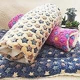 Global- Winter Doghouse Matte / Lamm Kaschmir Blanket / Pet Blanket Quilt / Puppies Decke Katze Steppdecke / Widerstand zu beißen starke dicke Baumwolle Pad ( farbe : #1 , größe : 32*50cm ) - 3