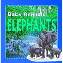 Elephants (Wild Baby Animals (Stargazer))